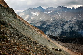 National Park Service employees headed for Big Arroyo lead a pack of horses over Black Rock Pass. The Kaweah Peaks Ridge is in the background. Note the distinct transitions in the rock from black to red. (Chris Jordan-Bloch / Earthjustice)
