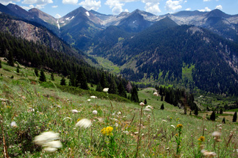 The resplendent Mineral King Valley, as seen from the trail returning to the valley from Timber Gap. Farewell Gap is visible on the left, at the end of the valley. Vandever Mountain (11,947 feet) is the mountain on the right side of Farewell Gap. Moving right, the tallest peaks are White Chief (11,159 feet) and Hengst (11,146 feet). The bowls below these mountains -- which contain numerous alpine lakes, including White Chief, Eagle, and the Mosquito Lakes chain -- were the epicenter of Disney's ski resort plans.