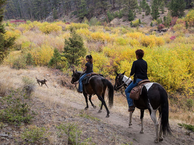 Horseback riders in the Humbug Spires Wilderness Study Area. The area is a 11,175-acre roadless area.
