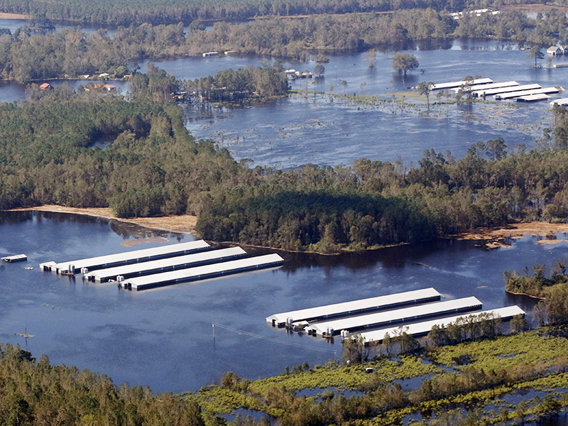 Another hog facility flooded by Hurricane Florence.
