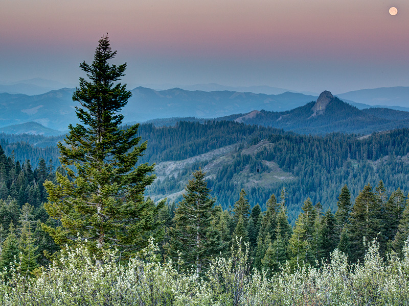 The Cascade-Siskiyou National Monument spanning Oregon and Northern California is at risk of losing its designation as a national monument and falling prey to logging if this bill passes.