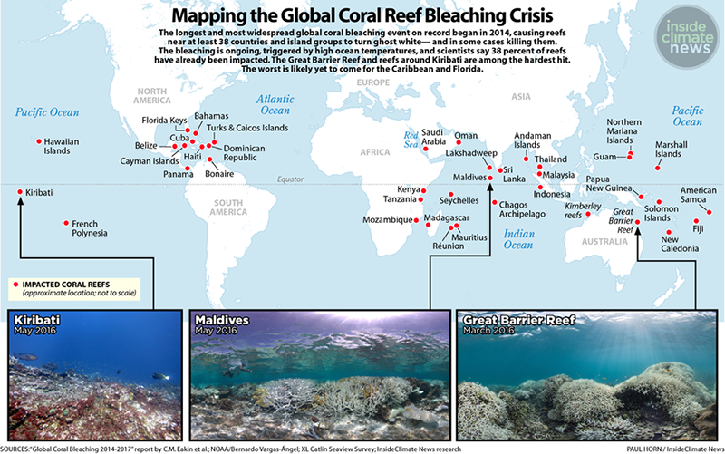 Mapping the Global Coral Reef Bleaching Crisis