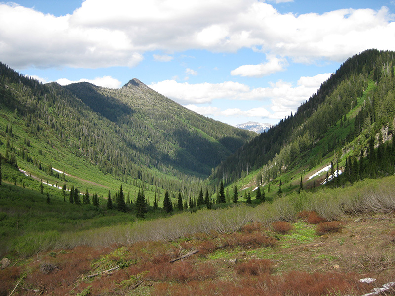 Dickey Basin in Flathead National Forest.