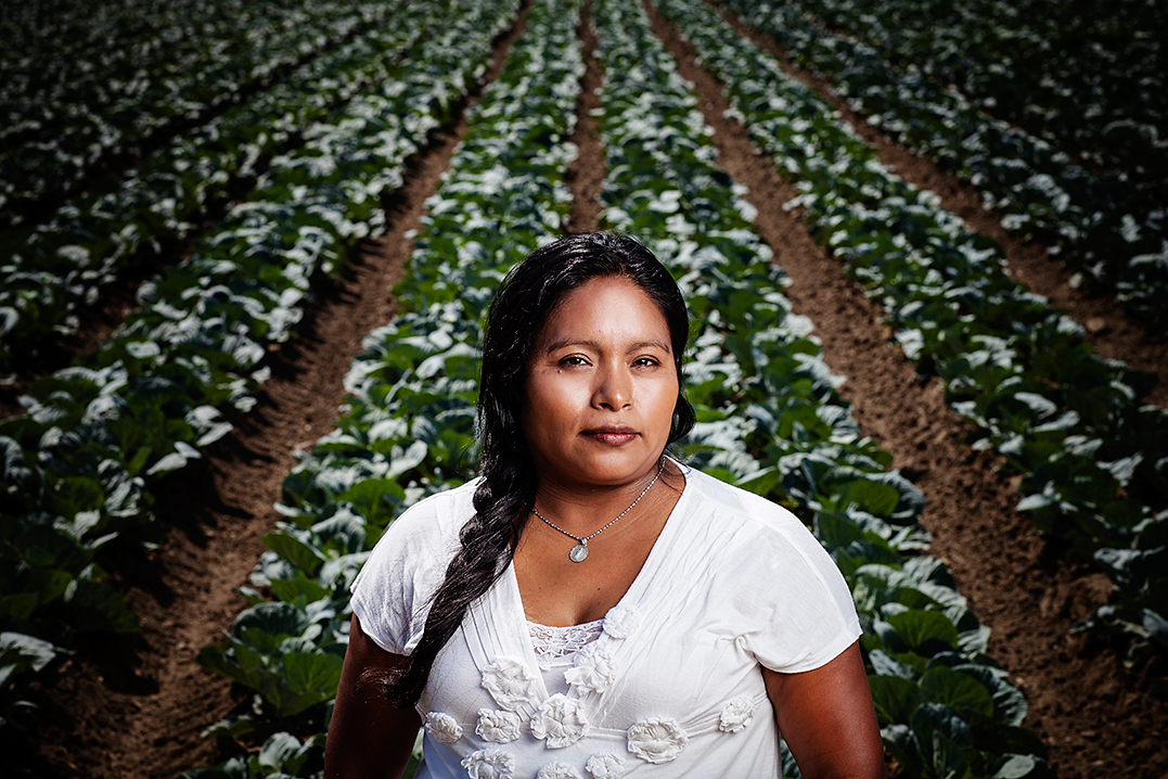 Elvia Vasquez in front of a lettuce field, which she harvested on the Central Coast of California in the 1990s.