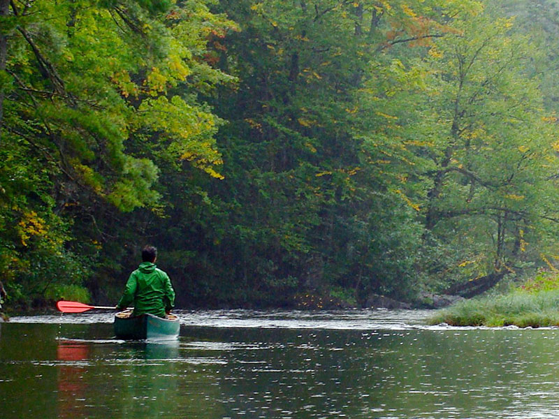 A  paddler on the Penobscot River