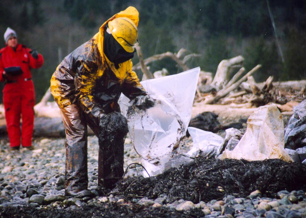 A worker cleans up the 2003 Point Wells Spill that coated the Suquamish's area of coastline, even though the spill was miles away.