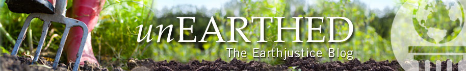 unEARTHED. The Earthjustice Blog