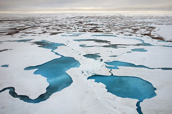 The Chukchi Sea. (Karen E. Frey / NOAA)