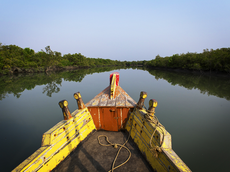 Boat ride through the Sundarbans