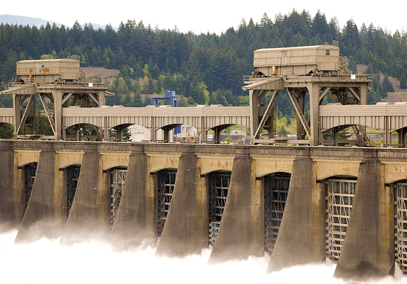 The Bonneville Dam, on the Columbia River, is a powerful barrier to salmon migration.