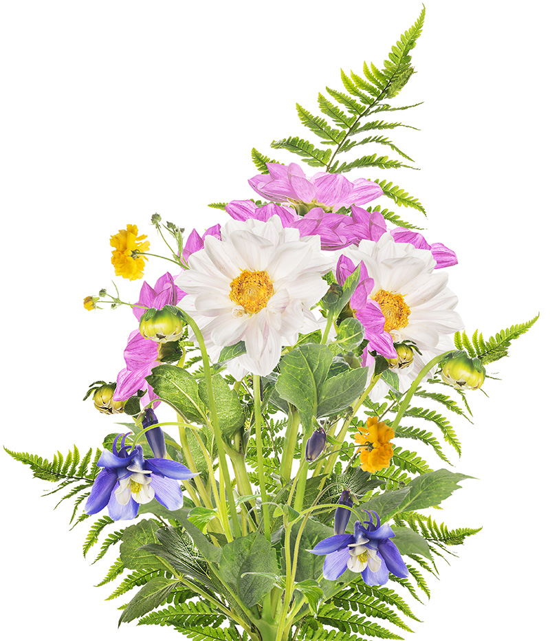 Bouquet with ferns.