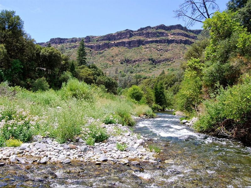The full-flowing Butte Creek, during the Chinook spring-run in 2014.