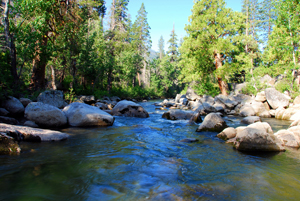 Stanislaus River. (Photo: Jon Wiley)