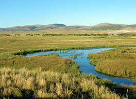 Bear River. (FWS)