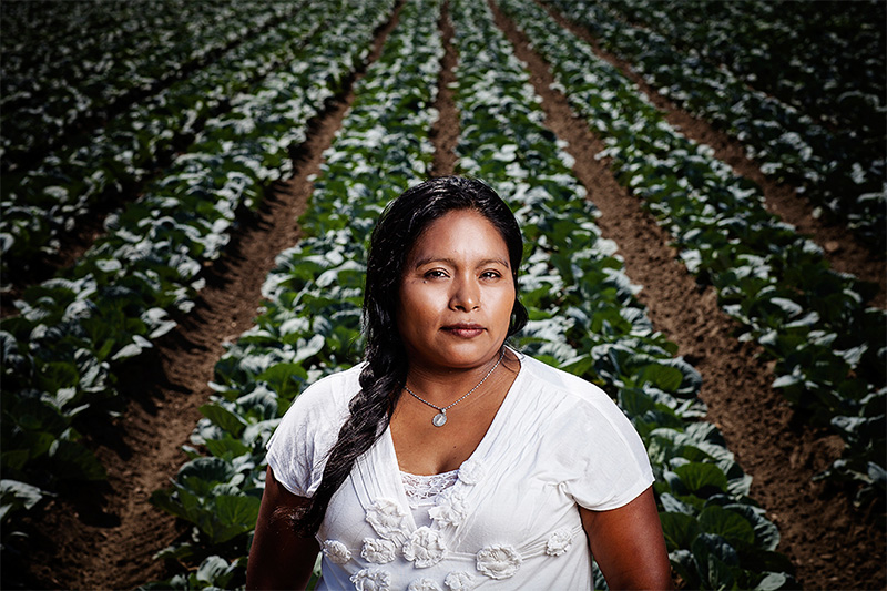 Olga Santos, in a California strawberry field where, as a young girl, she was sprayed with toxic pesticides while eating lunch with her family.