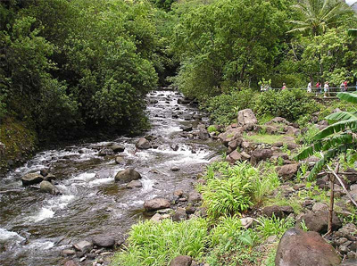 `Iao Stream flowing naturally above all diversions at the `Iao Needle State Park.