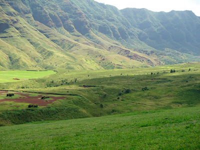 Makua valley. (David Henkin / Earthjustice)