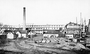 Menhaden oil and guano factory at Tiverton, RI in 1894.