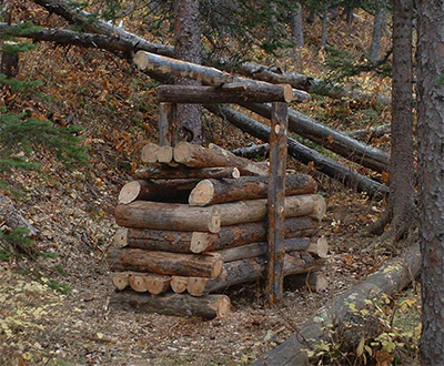 Log wolverine trap in Glacier National Park. (Forest Service)