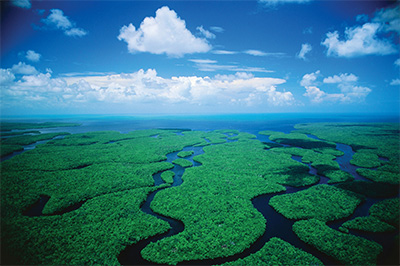 The Everglades. (State Dept.)