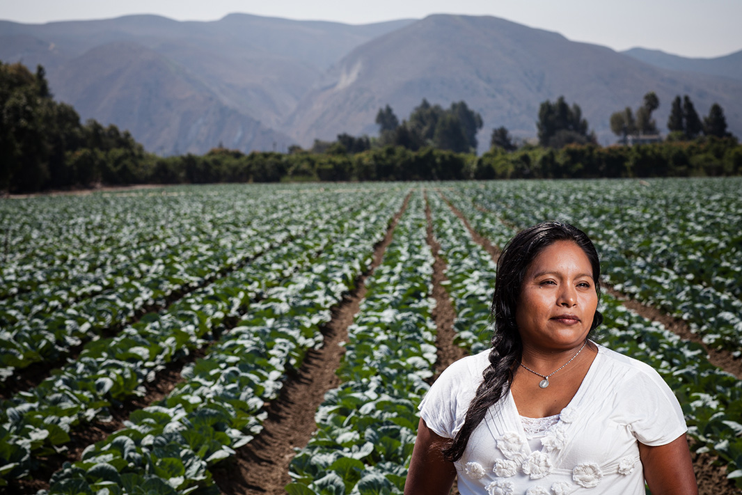Elvia Vasquez, near a lettuce field where she harvested crops on the Central Coast of California in the 1990s.