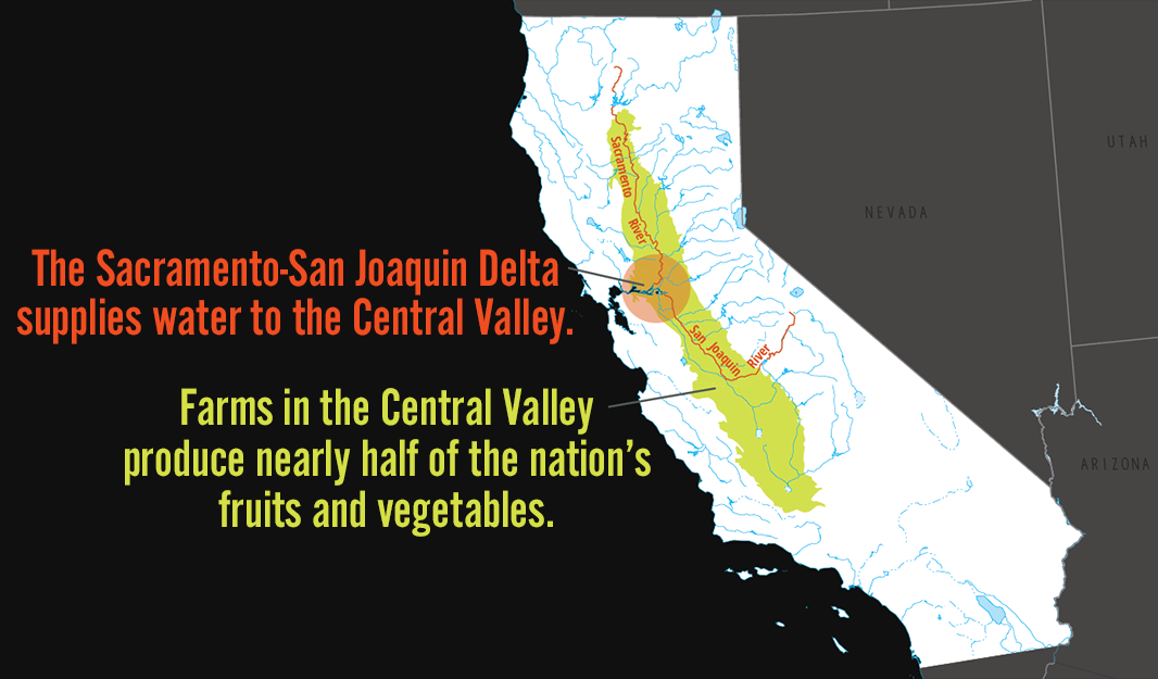 The Sacramento-San Joaquin Delta supplies water to the Central Valley. Farms in the Central Valley produce nearly half of the nation's fruits and vegetables.