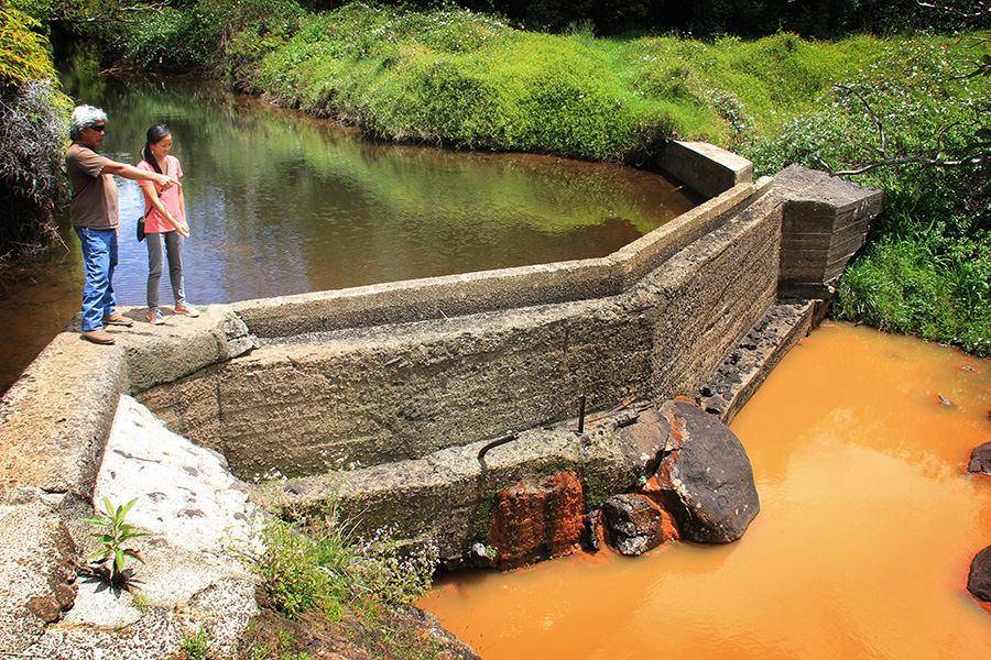 John A'ana, a taro farmer, shows Kylie Wager the stagnant orange water downstream from a diversion on Waiakoali Stream, one of the headwaters of Kaua'i's Waimea River.