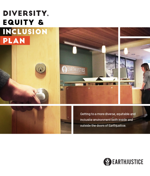 The 2016 Diversity, Equity & Inclusion Action Plan.