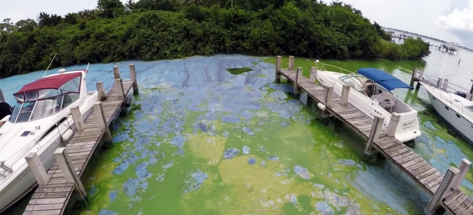 The algae outbreak at the St. Lucie River, June 27, 2016.