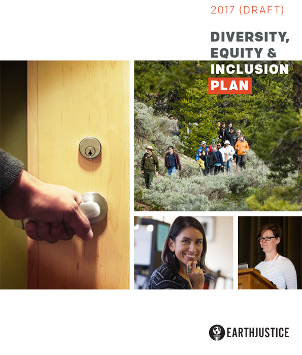 The 2017 (Draft) Diversity, Equity & Inclusion Action Plan.