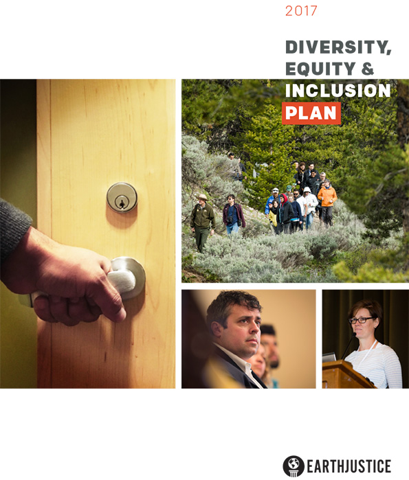 The 2017 Diversity, Equity & Inclusion Action Plan.