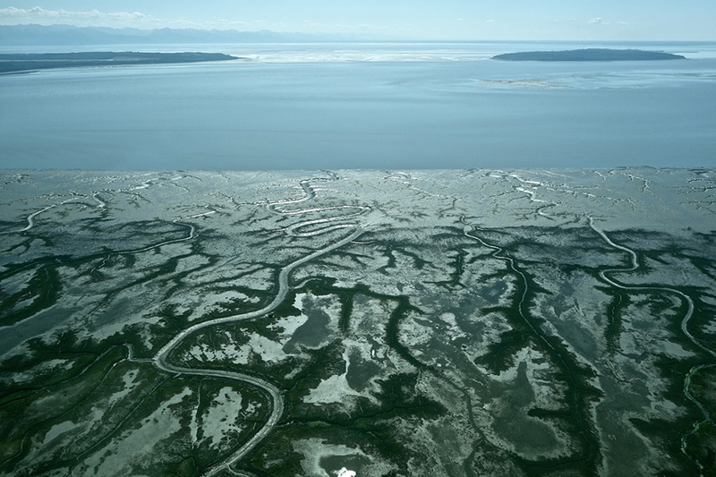 The west side of Cook Inlet is filled with water bodies. Here, and throughout Alaska, coal deposits coincide with vital salmon spawning streams. About 14 miles of these streams would be destroyed by the proposed Chuitna coal mine.
