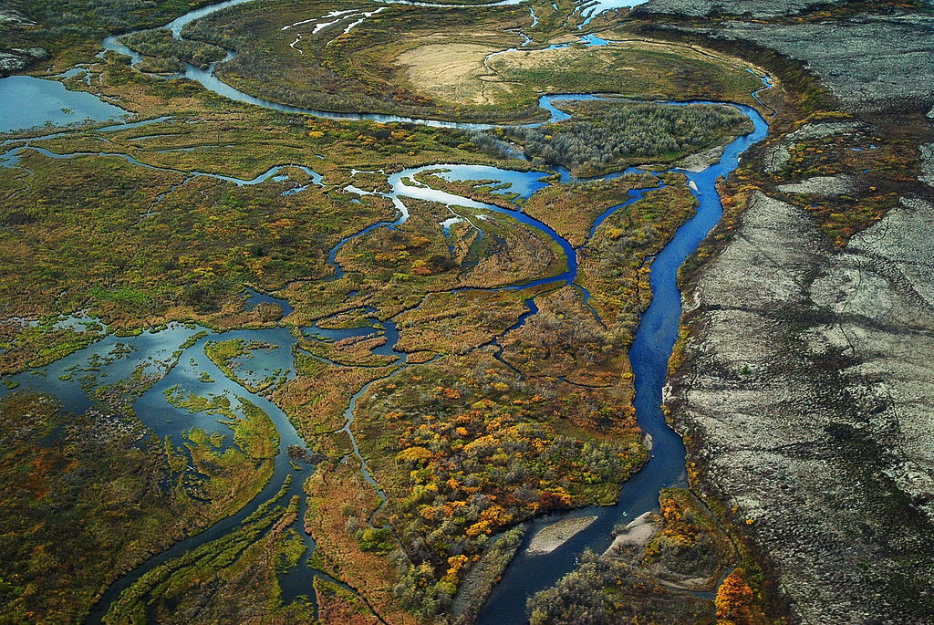 The braided wetlands and tundra of Upper Talarik Creek, flowing into Lake Iliamna and then the Kvichak River before emptying into Bristol Bay. The watershed is downstream of the Pebble deposit.