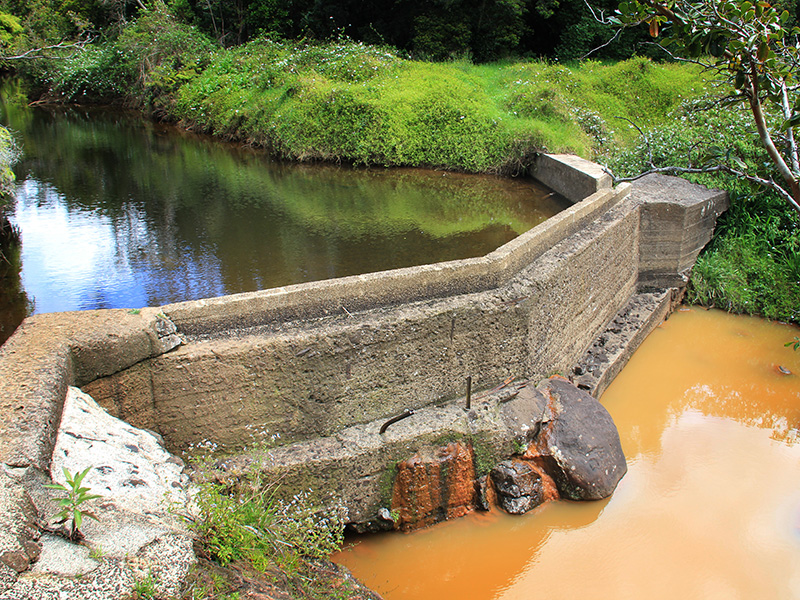 Dam blocking Waiakoali stream flow.