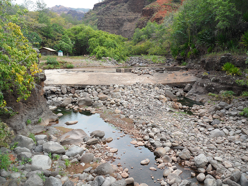 Dry stream bed and stagnant water below Waiahulu diversion.