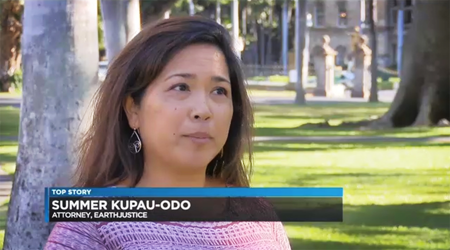 Summer Kupau-Odo, interviewed by Hawaii News Now.