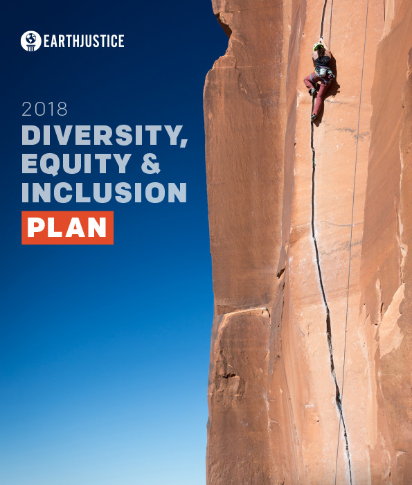 The 2018 Diversity, Equity & Inclusion Plan.