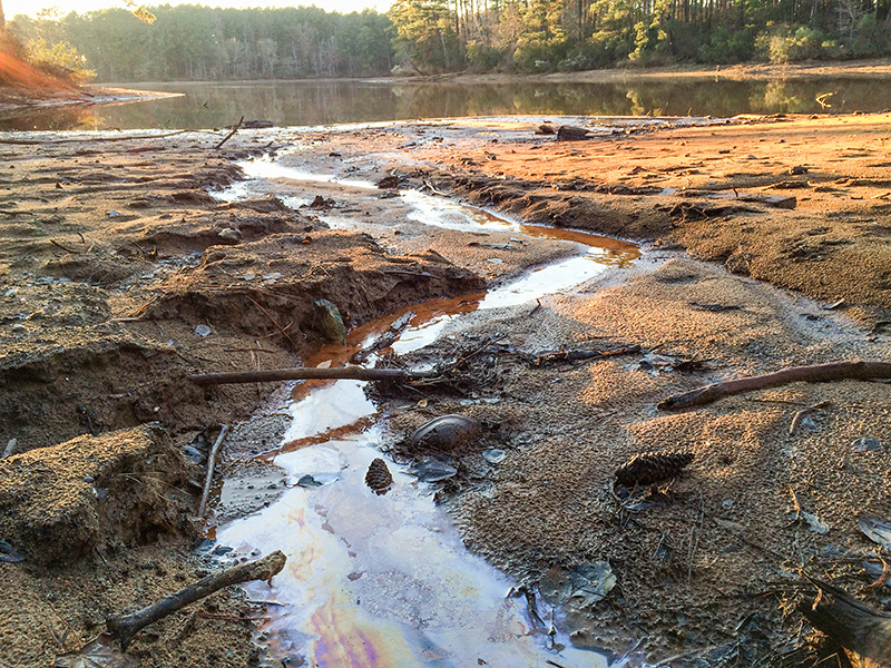Contaminated groundwater seeping out of the banks and into Lake Sinclair, near Plant Harllee Branch in Georgia, Dec. 9, 2015.