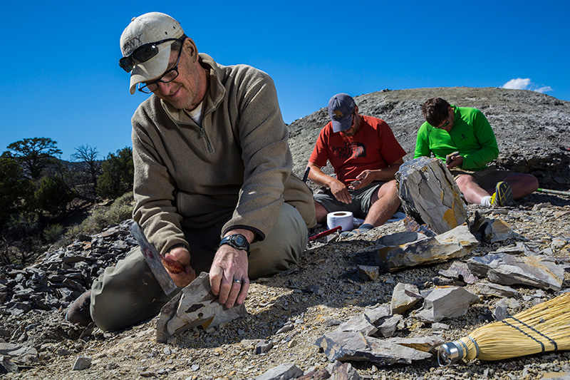 Paleontologist Scott Sampson, left, quarries for leaf fossils in Grand Staircase-Escalante National Monument.