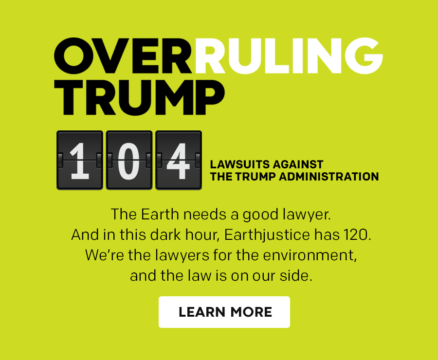 Overruling Trump: 104 lawsuits filed against the Trump administration.