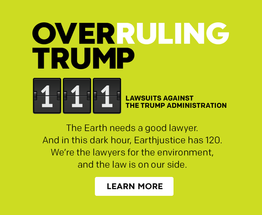Overruling Trump: 111 lawsuits filed against the Trump administration.