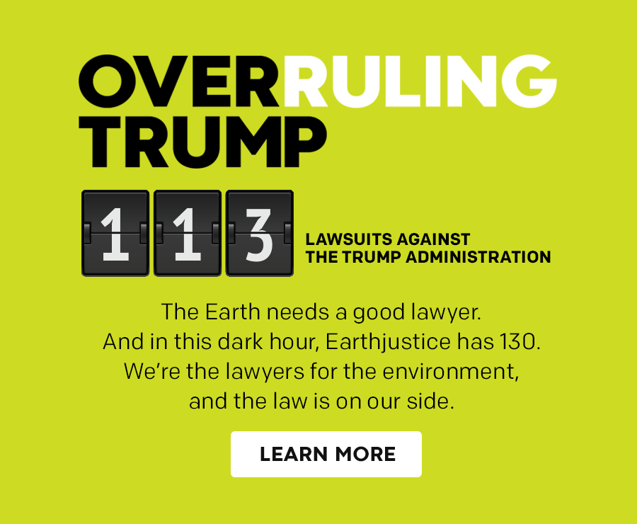 Overruling Trump: 113 lawsuits filed against the Trump administration.