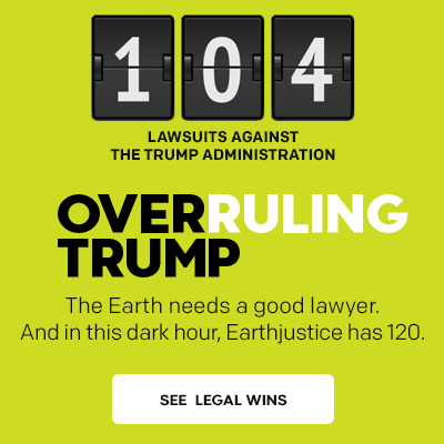 Overruling Trump: 103 lawsuits filed against the Trump administration.