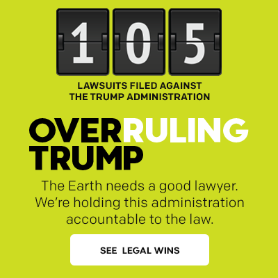 Overruling Trump: 105 lawsuits filed against the Trump administration.