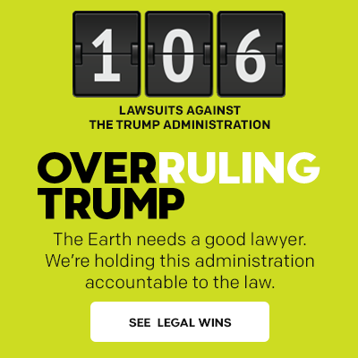 Overruling Trump: 106 lawsuits filed against the Trump administration.