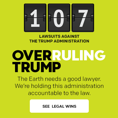 Overruling Trump: 107 lawsuits filed against the Trump administration.