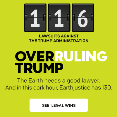 Overruling Trump: 116 lawsuits filed against the Trump administration.
