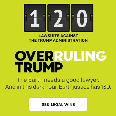 Overruling Trump: 120 lawsuits filed against the Trump administration.