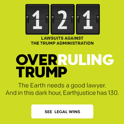 Overruling Trump: 121 lawsuits filed against the Trump administration.
