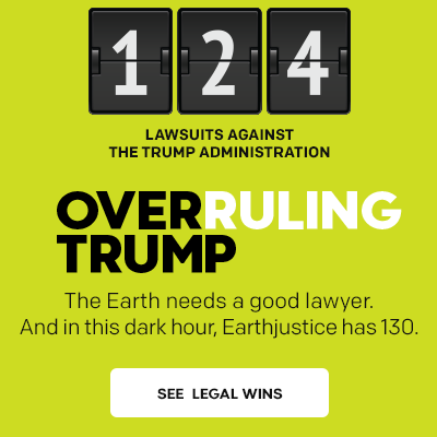 Overruling Trump: 124 lawsuits filed. See tracker.